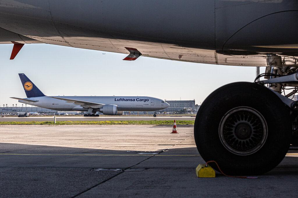 172649-HASS-Lufthansa-Medical-Cargo-40.jpg