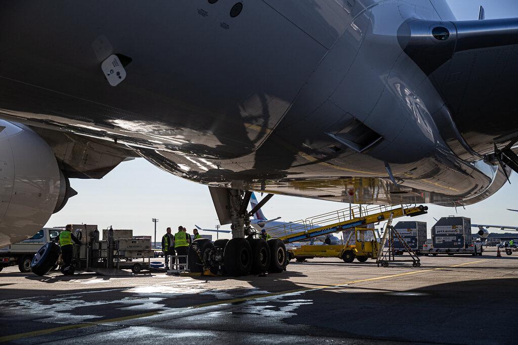 172649-HASS-Lufthansa-Medical-Cargo-66.jpg